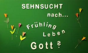 Unser Schaukasten Ahrensburg Frühling